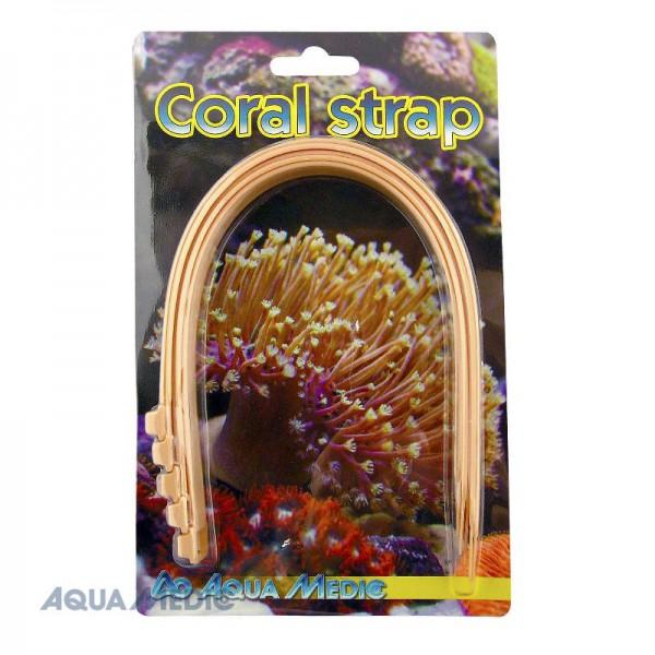 Coral strap (5 Stück)